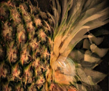 Exploding Pineapple Photo