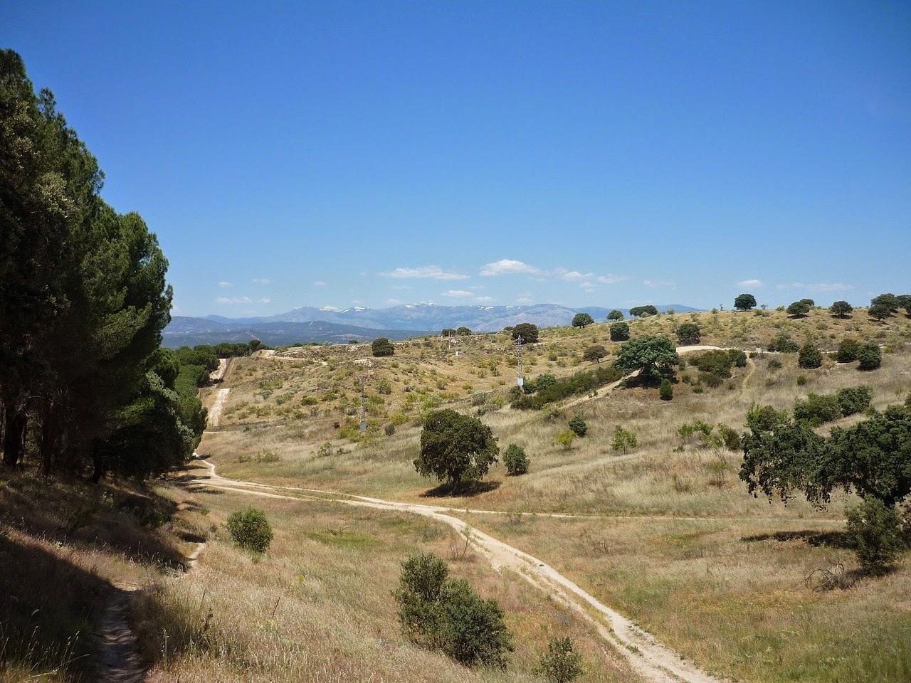 Blog Go Tandem - Vuelta por monte de El Pardo