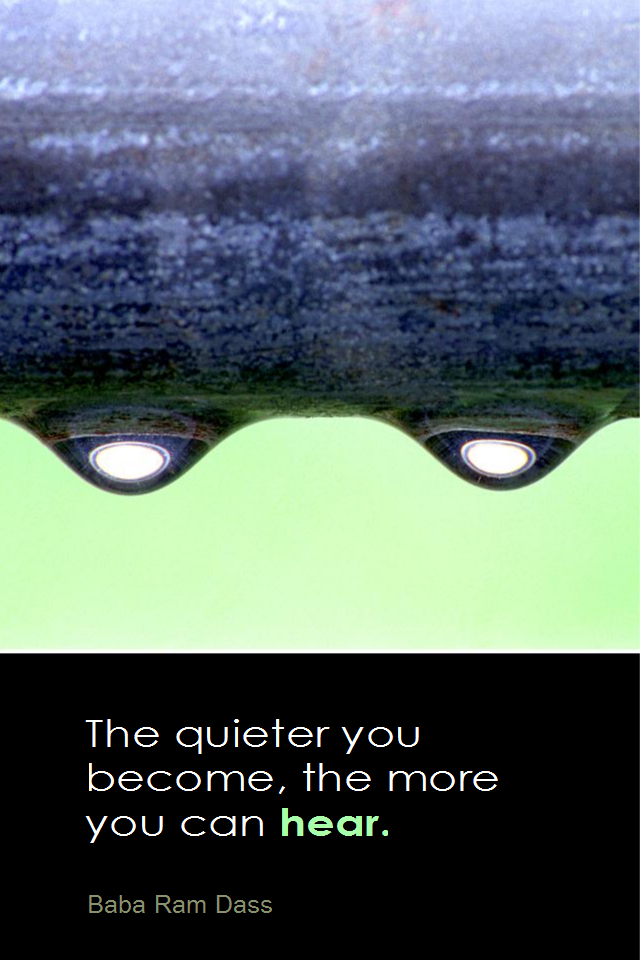 visual quote - image quotation for MEDITATION - The quieter you become, the more you can hear. - Baba Ram Dass