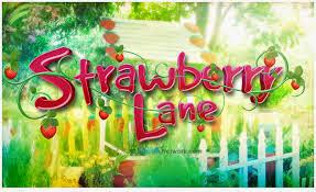 Strawberry Lane – 21 October 2014