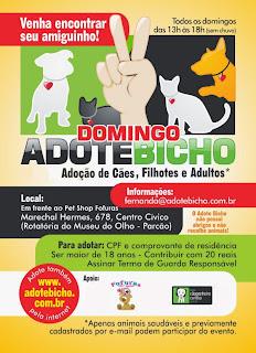 Domingo Adote Bicho