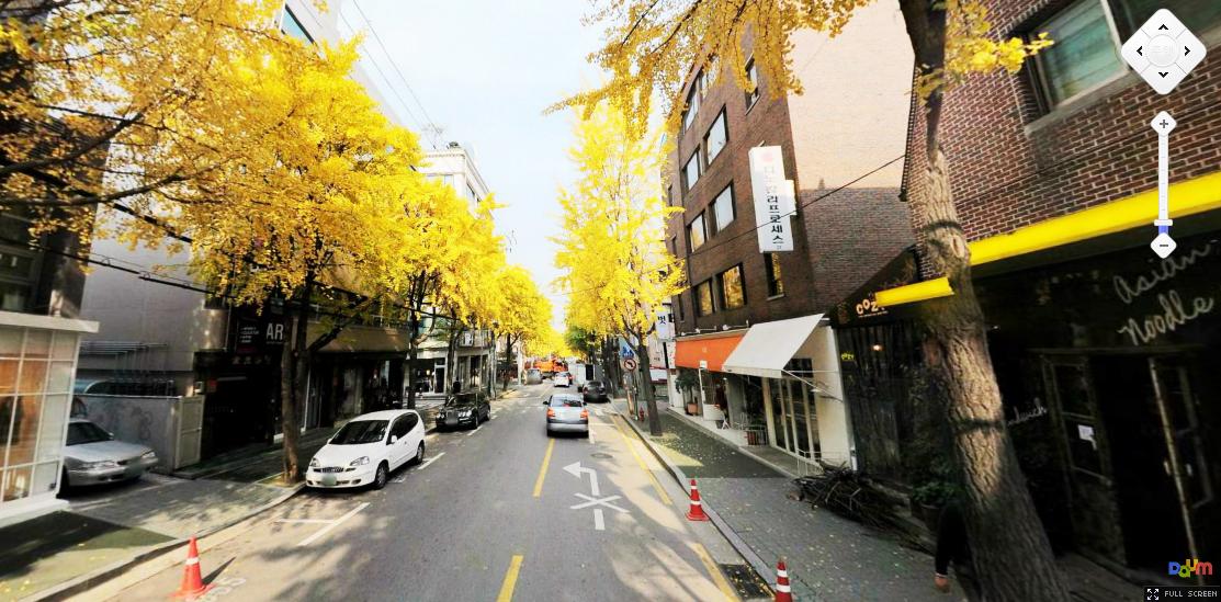 Muslim Backpackers Seoul Garosugil Treelined Street