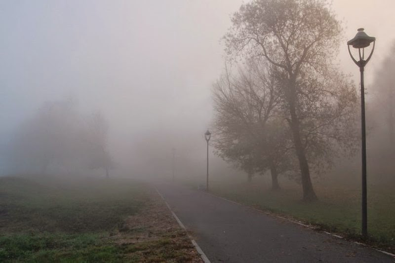 foggy-scenery-photo-12