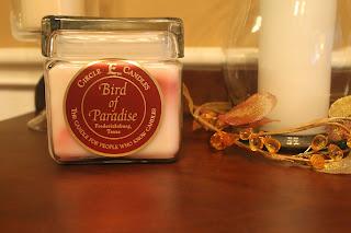 circle e bird of paradise scent
