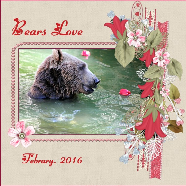 Feb.2016 - Bears Love