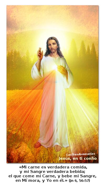divina misericordia con texto de la biblia