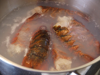 how to cook small frozen lobster tails