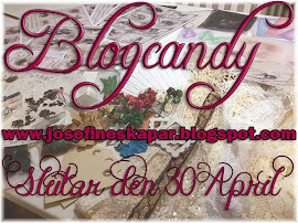 Blogcandy hos Josefin