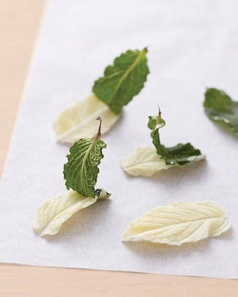 Креативные сладости! Как сделать шоколадные листья?
