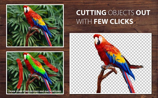 صورة من برنامج PhotoScissors لقص الصور