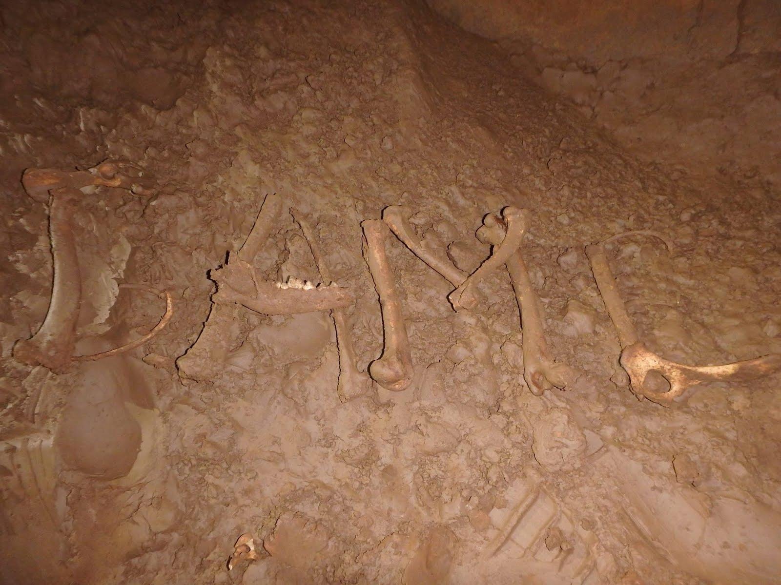 GAME de huesos bajo tierra.