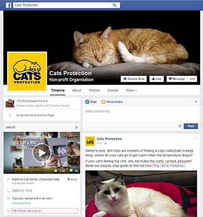 Cats Protection national Facebook page