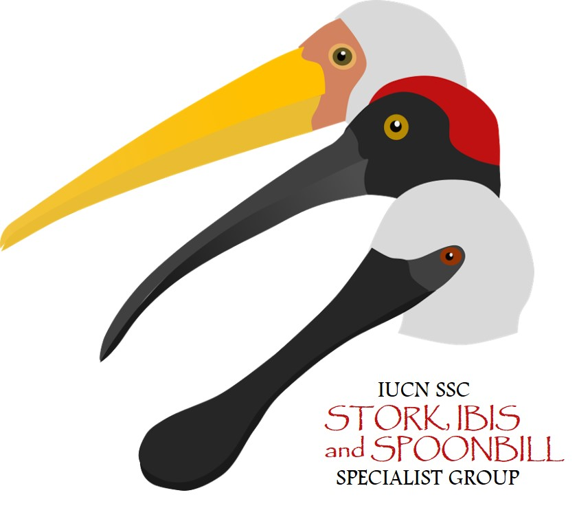 IUCN SSC Stork, Ibis and Spoonbill Specialist Group