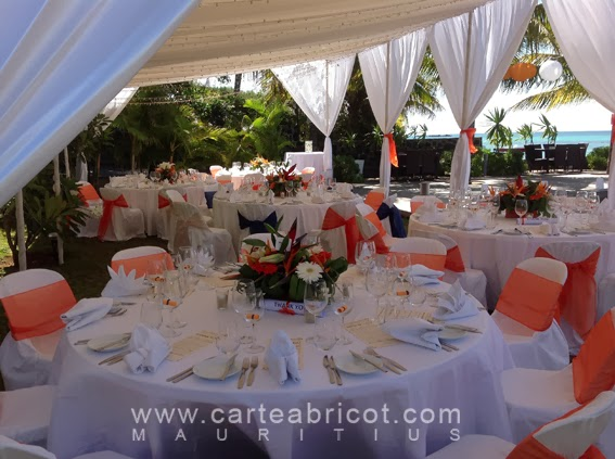 Alissa Et Dan 22 Octobre 2013 Carte Abricot Wedding Planner A L