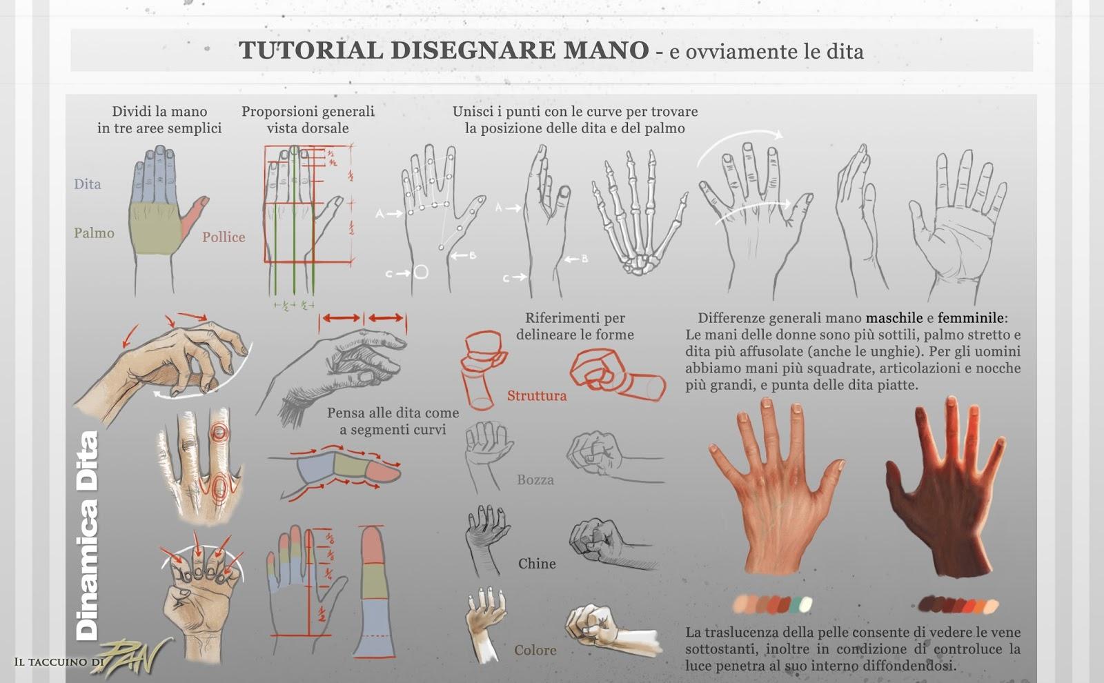 Estremamente Il taccuino di Pan: Tutorial Disegnare Mani e Dita DD45