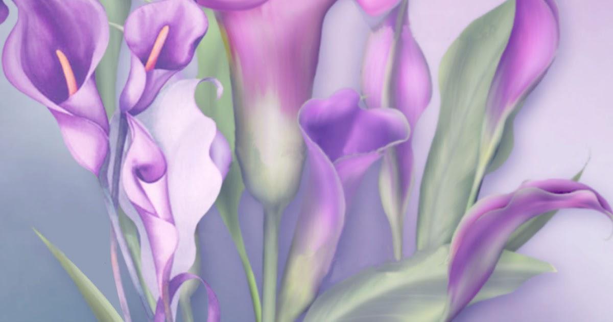 calla lilies suzuki cars