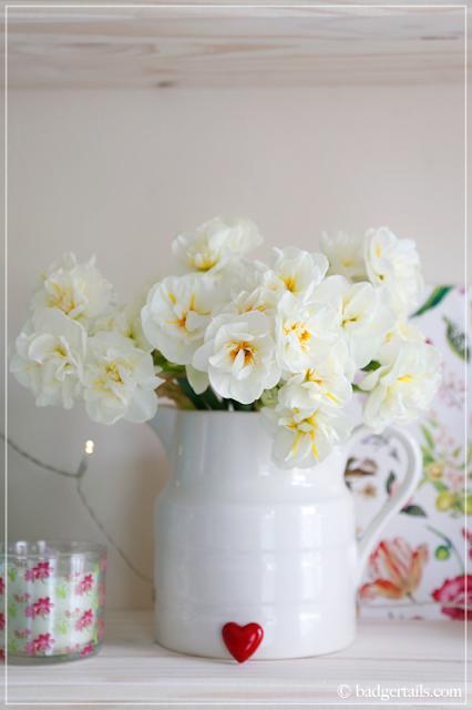 White Narcissus in Milk Jug on Bookshelf