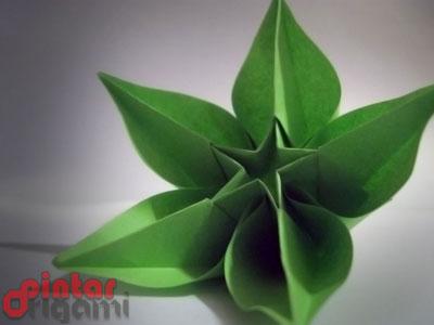 Gambar Origami Bunga Carambola