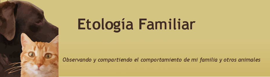 Etología Familiar