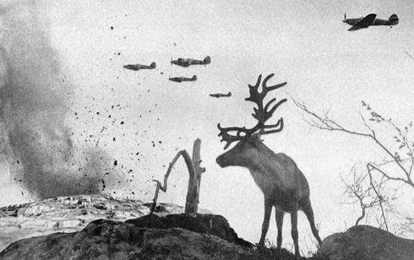 Fotografías inéditas de la Segunda Guerra Mundial
