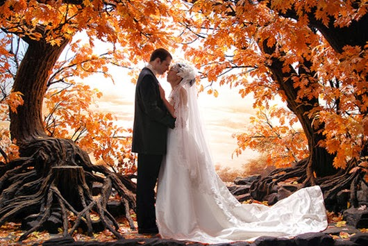 Wedding Photo Ideas autumn 2013