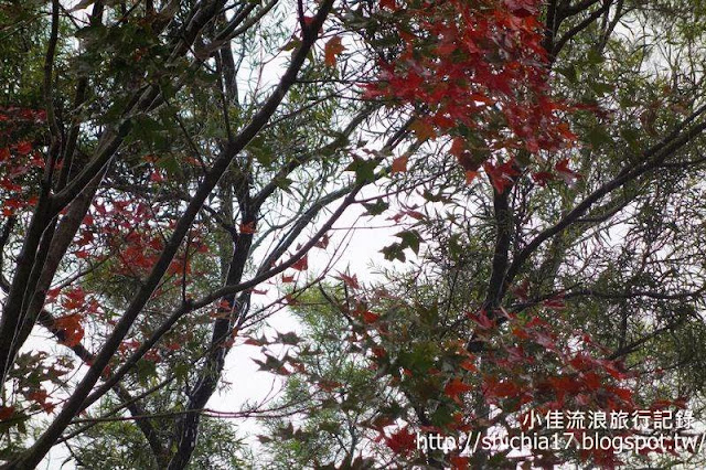 http://1.bp.blogspot.com/-Xmf0BuNR4OE/Uq2-0Cm05vI/AAAAAAAAKic/RU4ggQjM02M/s640/tn_DSC00905.JPG