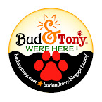 Bud & Tony's LUCKY BUTTON