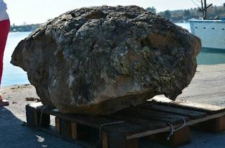 ΔΕΟΣ ΣΤΗΝ ΠΙΕΡΙΑ! Βρέθηκαν απολιθωμένες γιγάντιες χελώνες ηλικίας 2,5 εκατομμυρίων ετών! (Εικόνες)