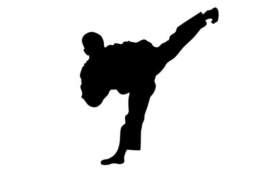 Τέτοιο Taekwondo δεν έχετε ξαναδεί! [video]