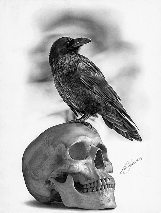 15-The-Raven-and-The-Skull-Julio-Lucas-Experimenting-with-Photo-Realistic-Drawings-www-designstack-co