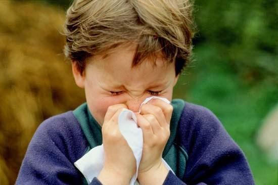 Allergic and Vasomotor Catarrhal Rhinitis Homeopathy Specialty Treatment Hospital in Velachery, Chennai, Tamil nadu, India