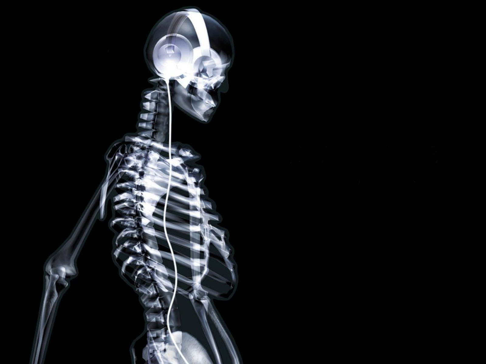wallpapers: Skeleton Wallpapers