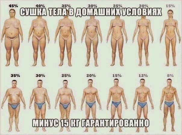 диета на 21 день минус 15 кг