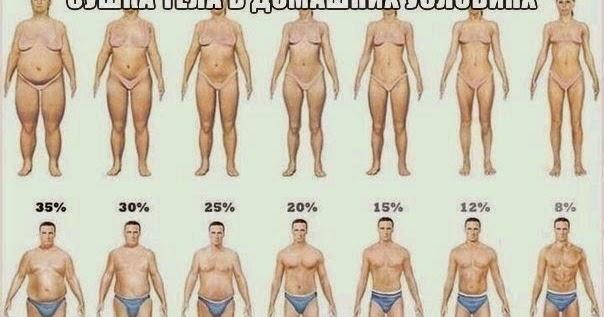 как похудеть сушка