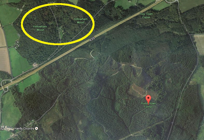 Bigfoot activity in Yellowham hill