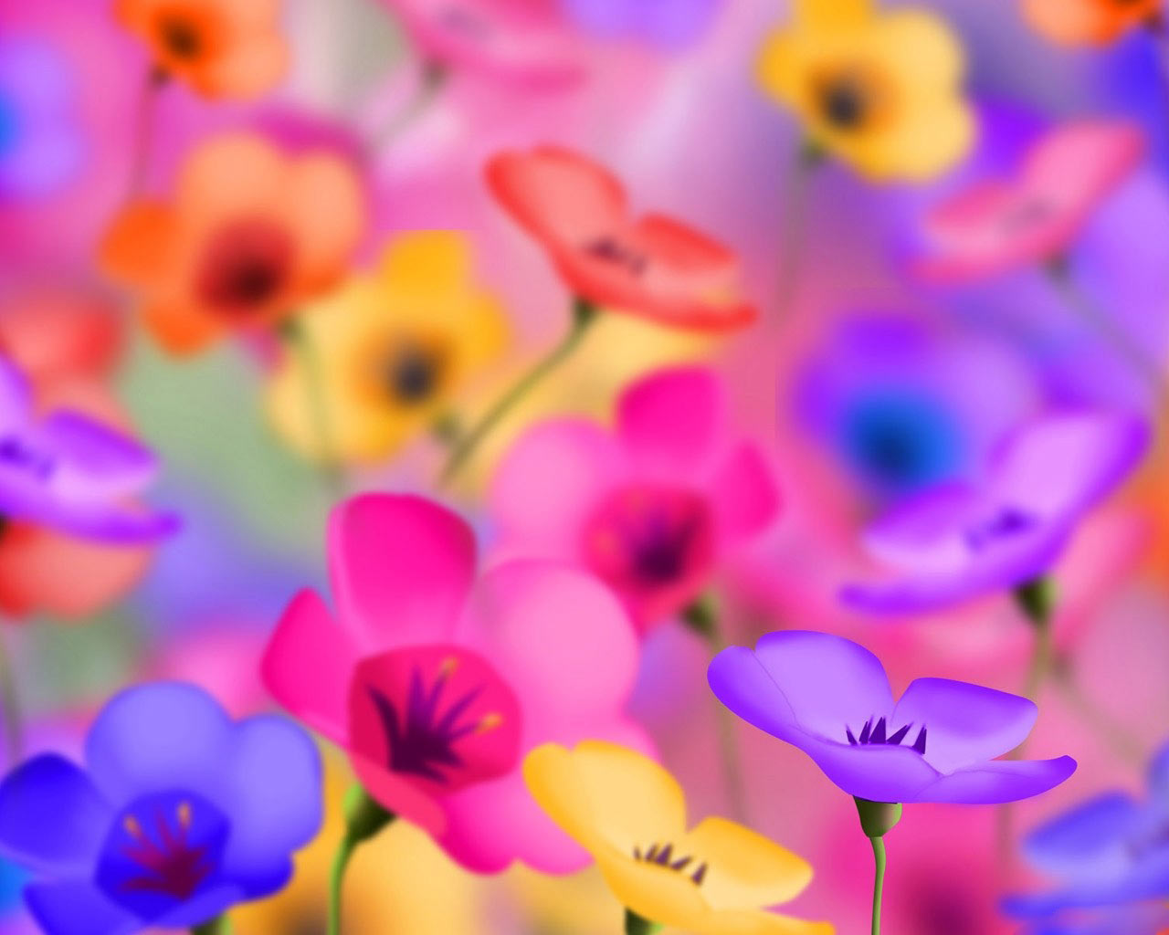 flowers for desktop