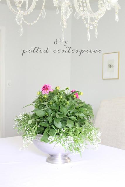 DIY Blooming Centerpiece