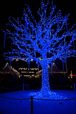 icy blue light tree