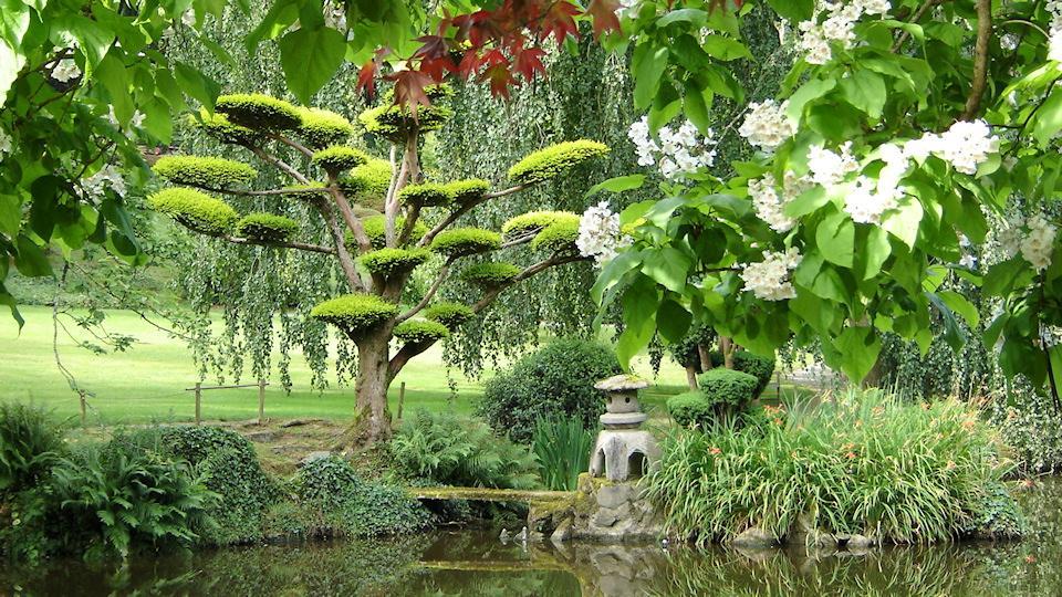 Matin lumineux jardin oriental de maul vrier for Le jardin oriental de maulevrier