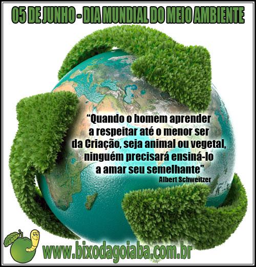Dia Mundial do Meio Ambiente e Dia da Ecologia - Bixo da Goiaba