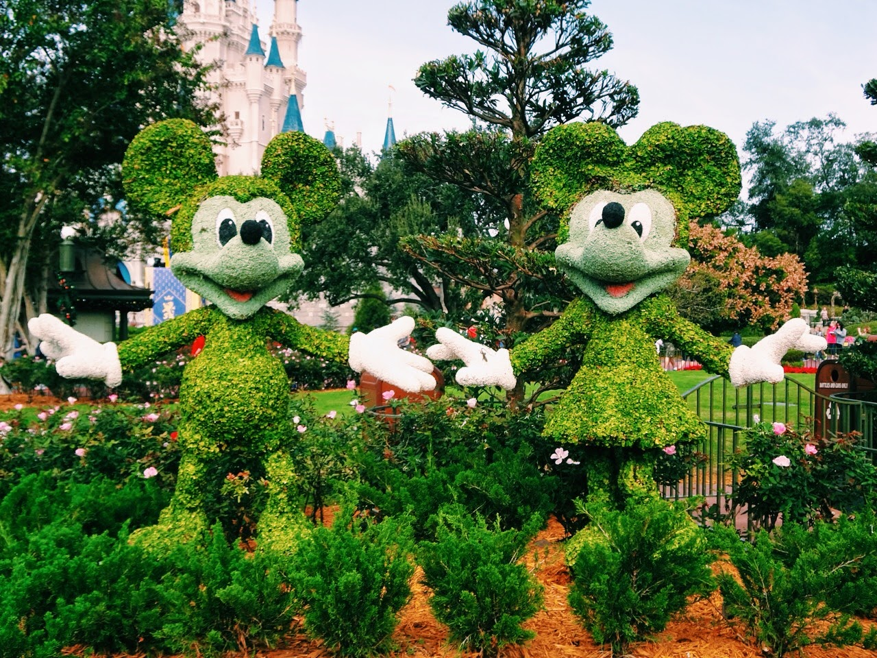 101 Walt Disney World Tips For Adults
