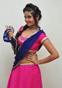 Shreya Vyas photos at Bengal Tiger audio-thumbnail-2