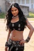Sana-Khan-Hot-Tamil-Actress-3