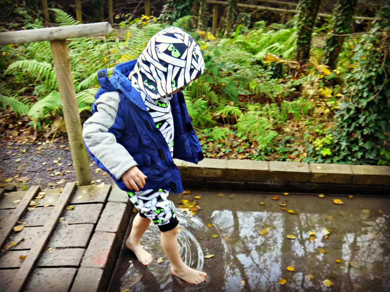 Halloween, Greenwood Forest Park