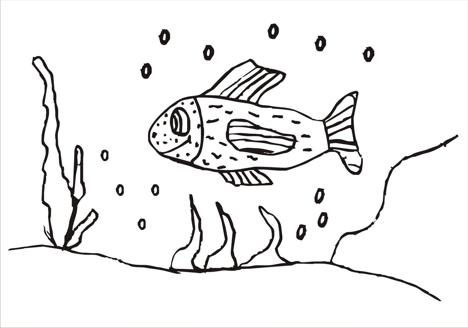 desenhos para colorir desenho para colorir de peixe aqui você