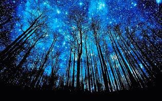... Habitación estrellada ...