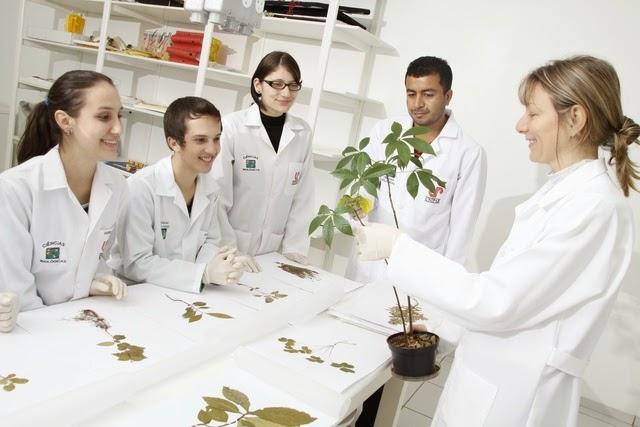 Melhores cursos de Biologia do Brasil