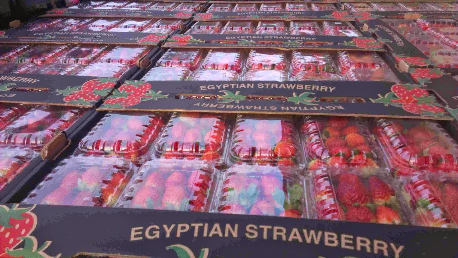 cheap strawberry prices