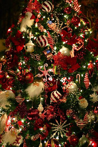 Christmas Tree Collection Gravesend : Christmas trees collection my