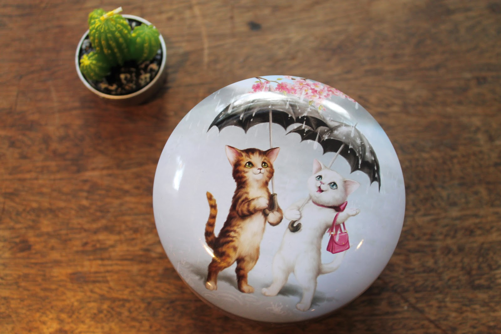 uk lifestyle homeware blog cats